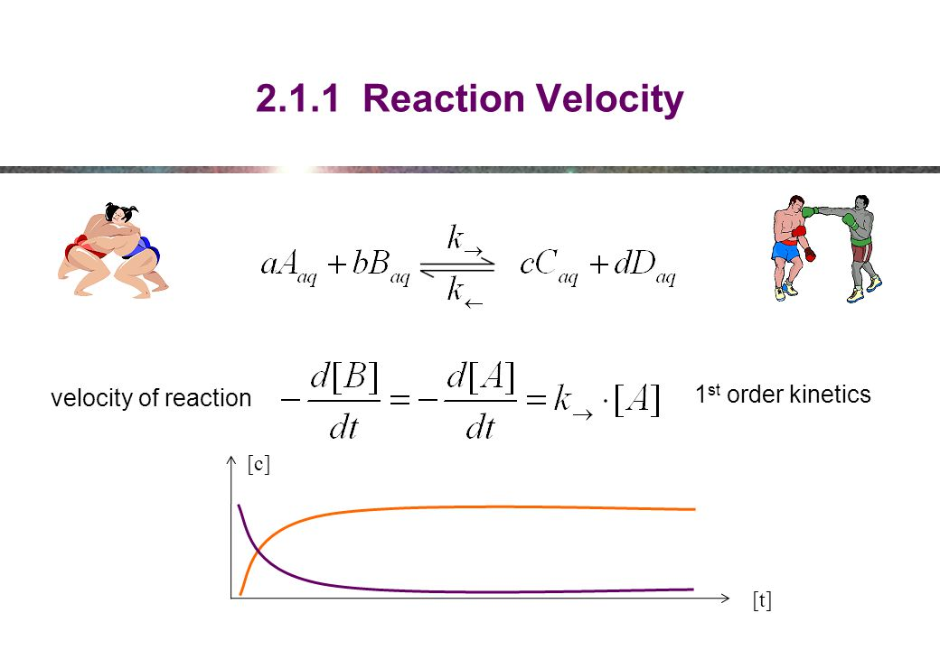 2.1.1 Reaction Velocity 1st order kinetics velocity of reaction [c]